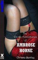 AmbroseHornelowres